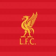 利利事事Liverpool Issues